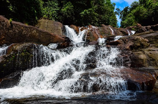 Koralegama, Шри-Ланка: Anagimala water fall in Kanneliya Forest Reserve