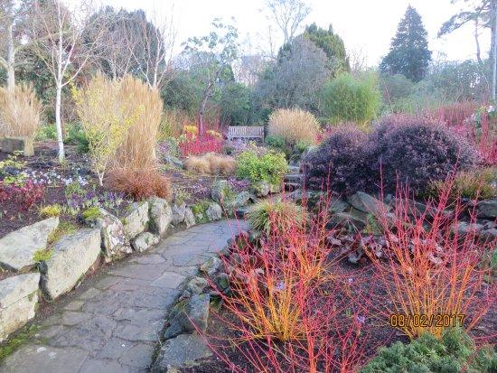 Winter Garden Picture Of Bodnant Garden Tal Y Cafn Tripadvisor
