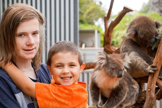 Seddon, Australia: photo6.jpg