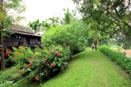 Saraphi, Thailand: Rice bearn villa