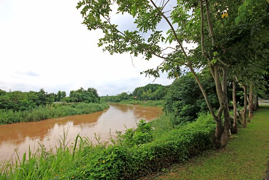 Saraphi, Thailand: espace où vous pouvez vous balader, le long du fleuve...