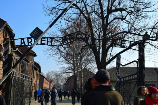 Krakow Discovery - Auschwitz Tours : DSC_0152_large.jpg