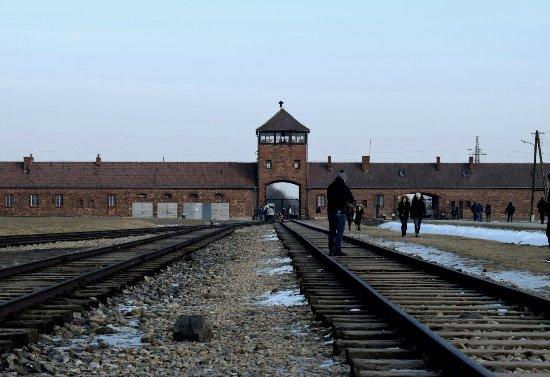 Krakow Discovery - Auschwitz Tours : DSC_0254_large.jpg