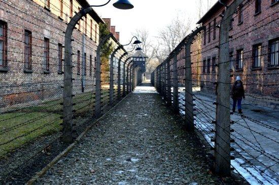 Krakow Discovery - Auschwitz Tours : DSC_0241_large.jpg
