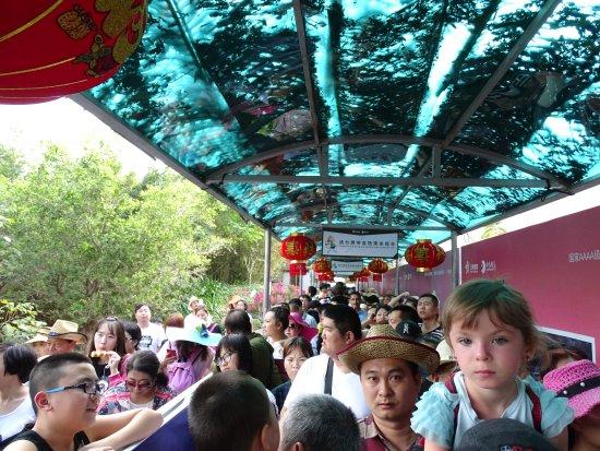 Lingshui County, China: это 1/5 очереди