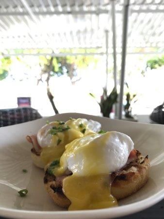 Feast: Eggs Benedicts