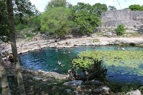Dzibilchaltun Ruins: une piscine naturelle