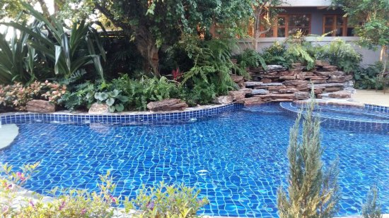 Casa Papaya Boutique Resort : Pool