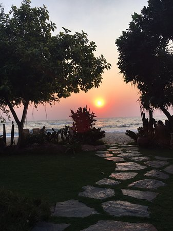 Casa Papaya Boutique Resort : Sun Rise in front of Casa Papaya