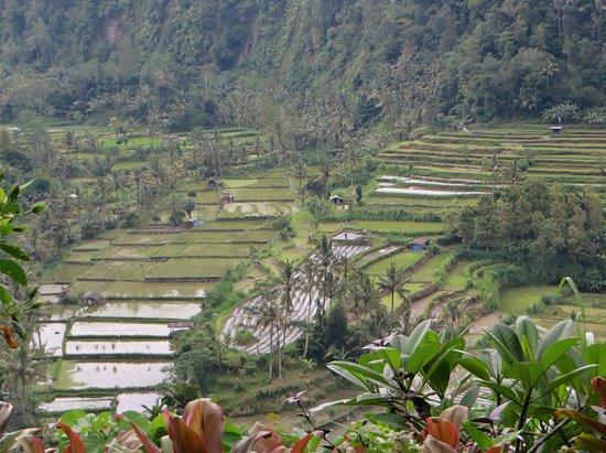 Lereng Agung: mooi uitzicht