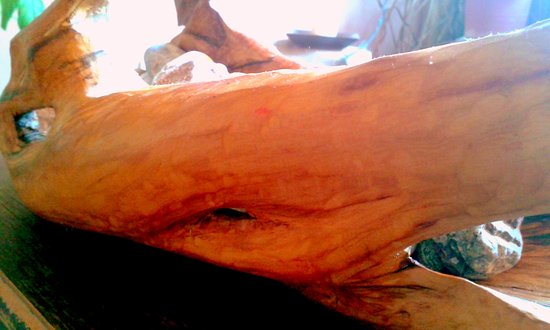 Sudurad, Croazia: bow...olive wood