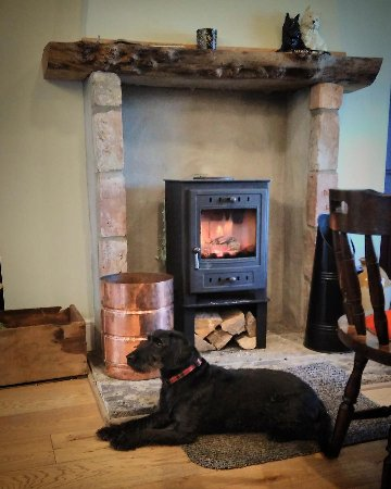 Lilliesleaf, UK: Local dog Evie, taking the best seat in the pub - in front of the fire.
