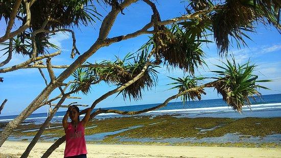 Nyang-nyang Beach: DSC_2197_large.jpg
