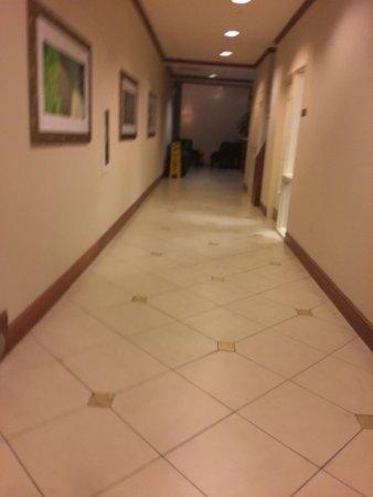 Hilton Garden Inn Naperville/Warrenville: Photo9