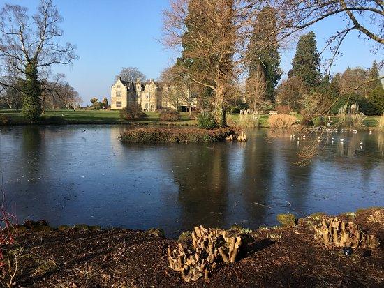 Haywards Heath, UK : Lovely walk through the lakes