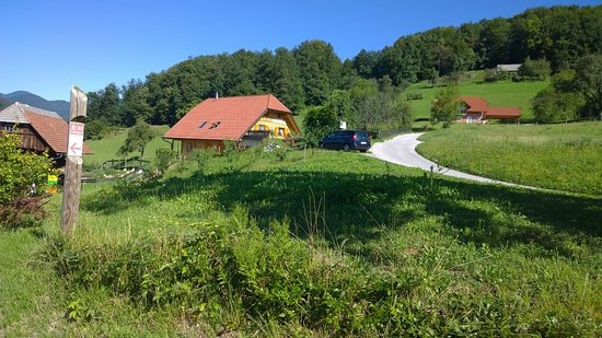 Lasko, Slovenia: View of property.