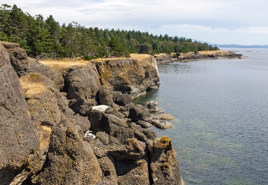 Hornby Island, Canada : A great park for walking and scenery