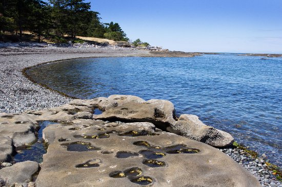 Hornby Island, Canada: A great park for walking and scenery