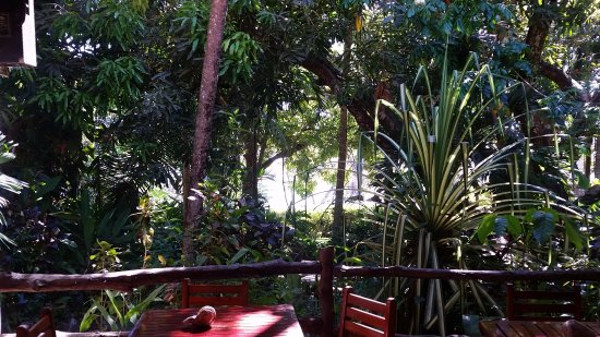 Hotel Nya: View from the dining area