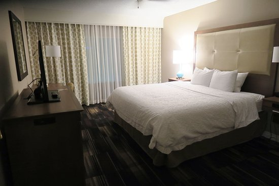 Hampton Inn Duluth: Suite