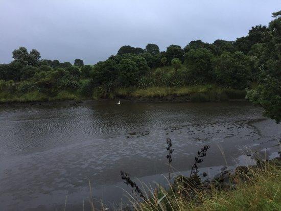 New Plymouth, New Zealand: photo3.jpg