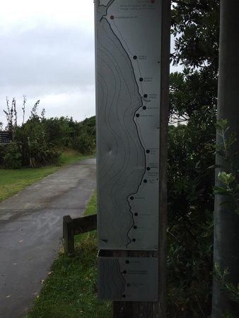New Plymouth, Nowa Zelandia: photo6.jpg