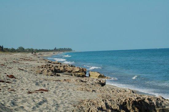 Hobe Sound, Flórida: Beach at Blowing Rocks Preserve