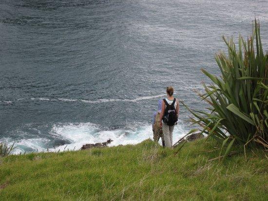 Fletcher Bay Backpackers: Meine Tochter am Fletscher Bay ( Coromandel Halbinsel )