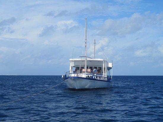 Cruise-Maldives: photo5.jpg