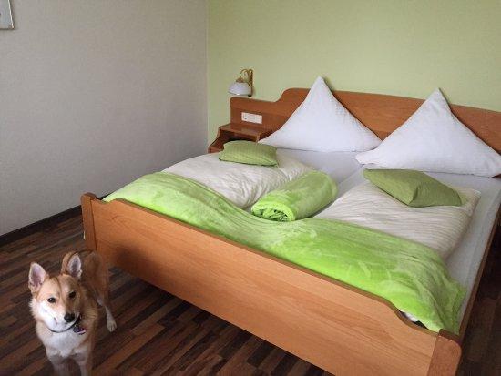 Hotel Landhaus Waldesruh: Hundefreundliches Hotel