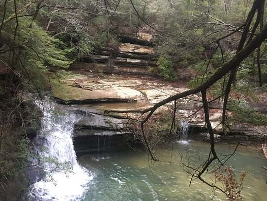 Double Springs, AL: Caney Creek Falls and nearby trails