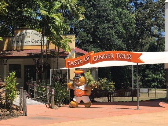 Yandina, Australia: photo6.jpg