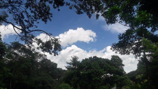 Jardin Botanico de Medellin: jardin botanico