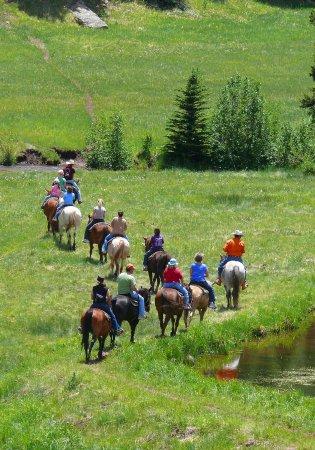 trail rides at Yellow Pine