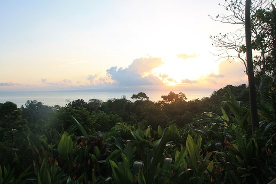 Lapa Rios Ecolodge Osa Peninsula Photo