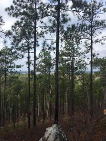 Jacksons Gap, Алабама: photo3.jpg