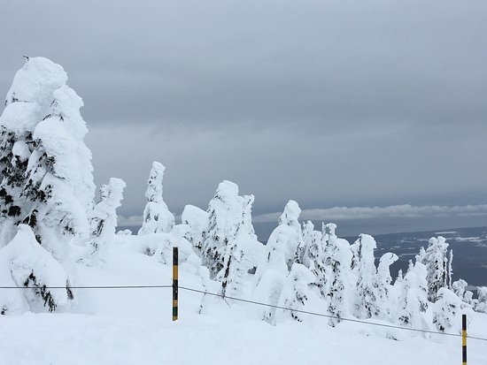 Mount Washington, Canada: photo2.jpg