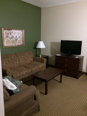 Holiday Inn Express Houston Bush Intercontinental Airport East: photo8.jpg