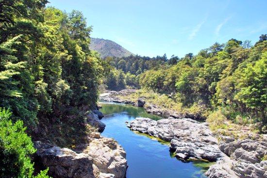 Havelock, Nya Zeeland: Pelorus river scenic reserve