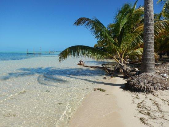 Isla Marisol Resort: Take me back