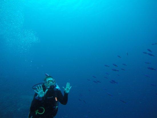 Turneffe Island, Belize: photo0.jpg