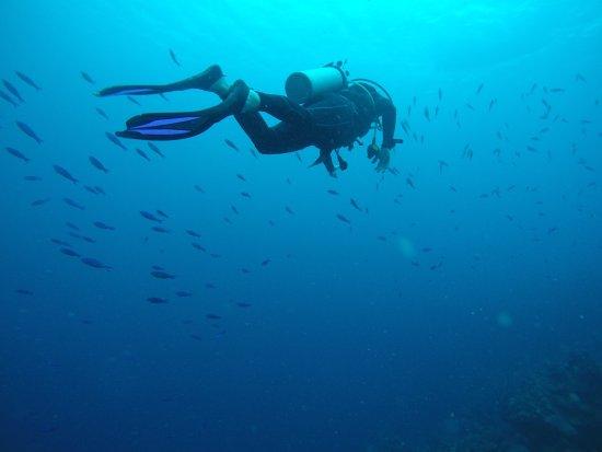 Turneffe Island, Belize: photo1.jpg