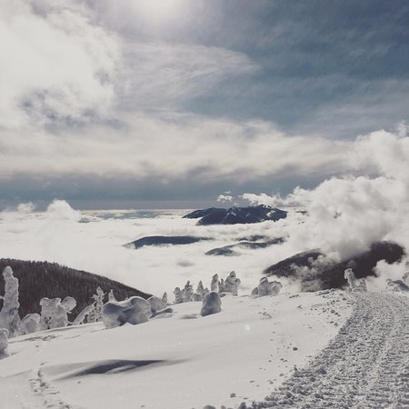 Rossland, Canada: Above the clouds at the top of the cat road