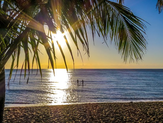 Trinity Beach, Australia: Hire a SUP or just sit under a coconut palm with an early morning coffee.