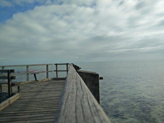 Denham, Australia: Jeti di Hamelin Pool