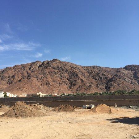 Mount Uhud: The View. MashaAllah!!