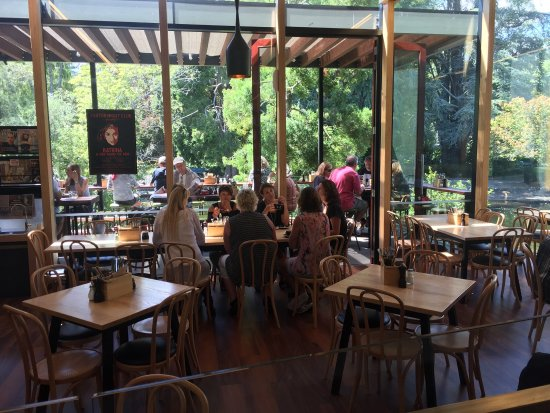 Suter Art Gallery Cafe: An amazing setting!