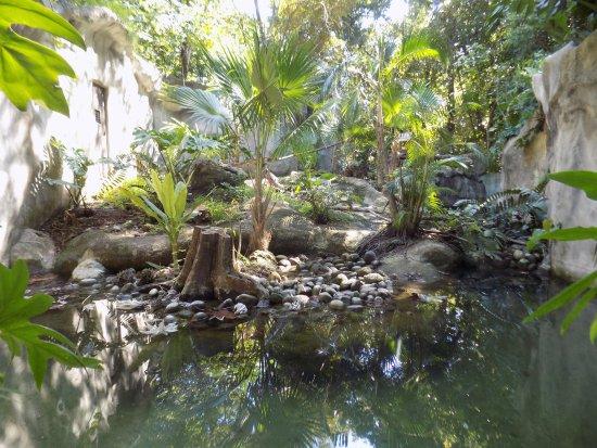 Zoologico Payo Obispo