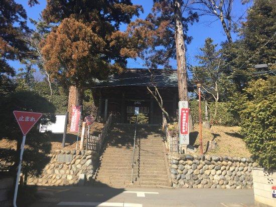 Three-Story Pagoda at Anrakuji Temple : photo3.jpg