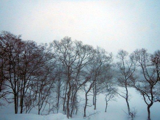 Kitashiobara-mura, Japon : 部屋からの眺めだが雪が降っているので周囲は良く見えない。